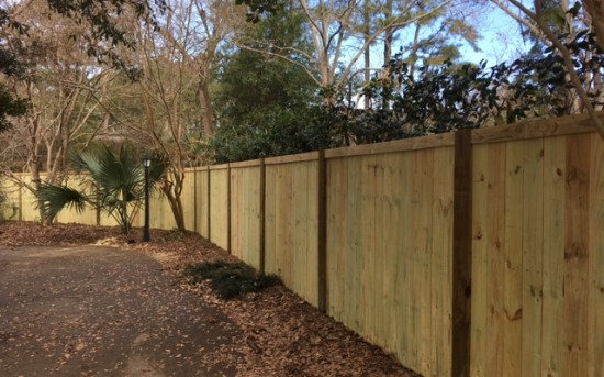 6′ tall Privacy Fence with Posts Exposed